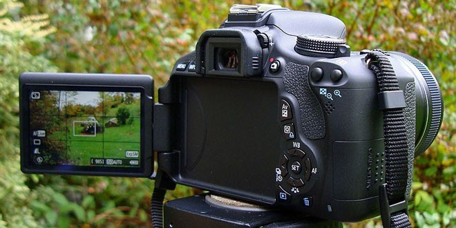top 10 best sellers in digital slr cameras