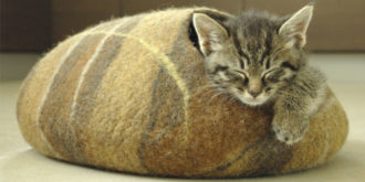 Top 10 Most Gifted Cat Beds
