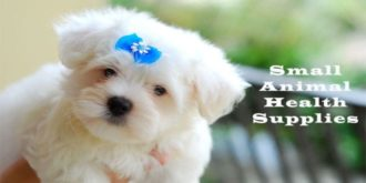 Top 10 Most Gifted Small Animal Health Supplies