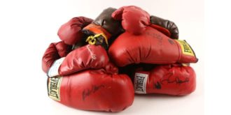 10 Top Rated Products in Sports Collectible Gloves