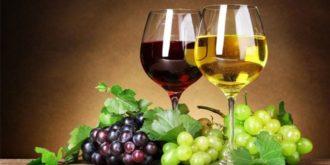 Top 10 Best Sellers in Wine Glasses