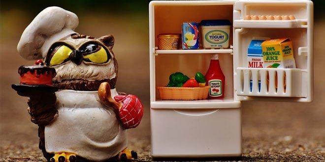 Top 10 Best Sellers in Refrigerators
