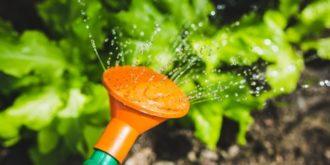 Top 10 Best Sellers in  Watering Cans